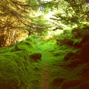 A secret path